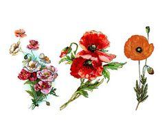 Large Vintage Flowers temporary tattoo body sticker by ArrowTattoo