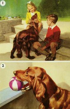 Teaching the dog - Peter & Jane, Read & Write