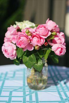 Mary roses