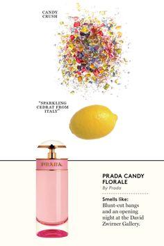Prada Candy Florale - The Cut Perfume Parfum, Perfume Scents, Best Perfume, Perfume Bottles, Chloe Perfume, Prada Candy, Perfume Tommy Girl, Lipsticks, Perfume Collection