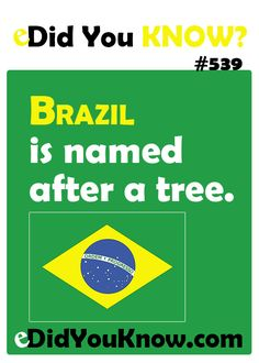 http://edidyouknow.com/did-you-know-539/ Brazil is named after a tree.