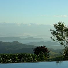 Low maintenance couple for away from it all stay with 2 dogs and 3 cats in glorious Costa Rican countryside | TrustedHousesitters.com