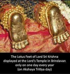 Om Namo Bhagavate Vasudevaya.