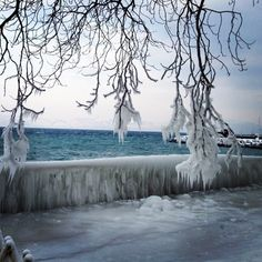 Europe  - cold cold winter