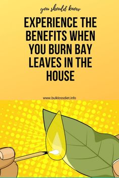 Experience The Benefits When You Burn Bay Leaves In The House - Bulk Loss Diet Natural Health Tips, Good Health Tips, Health And Beauty Tips, Natural Skin, Wellness Fitness, Fitness Tips, Health And Wellness, Health Fitness, Healthy Detox