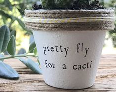 "2"" Pretty Fly for a Cacti » Plant Indoor and Outdoor Pot or Planter"