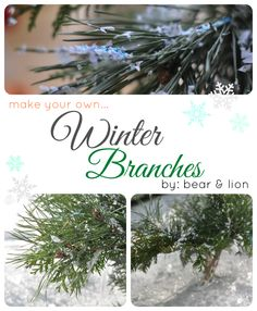 make your own winter branches. all you need is tissue paper, white glue and glitter. such a simple project with huge impact! perfect decoration after the holidays for these winter months in the new year! from bear & lion.