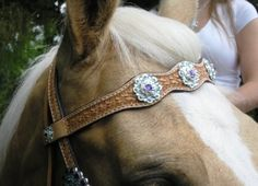 Even horses love bling! #blinglife