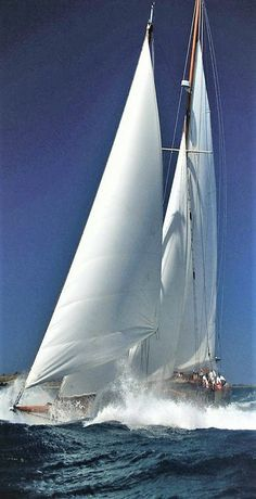 Let's go sailing - Seatech Marine Products & Daily Watermakers Yacht Design, Classic Yachts, Classic Sailing, Yacht Boat, Sailboat Yacht, Sail Away, Tall Ships, Water Crafts, Sailing Ships