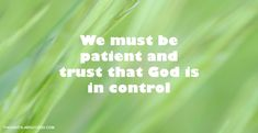 Patience and Trust | Thoughts about God Devotional by Darren Hewer