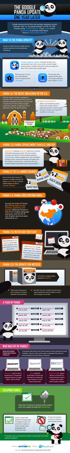 One year after Google Panda Infographic