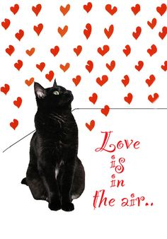 Black Cat Art  Print Black Cat and Red Hearts by DeborahJulian