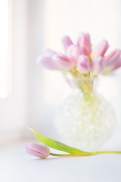 Amazing Flowers, Love Flowers, Big Photo, Pink Tulips, Flower Vases, Spring Time, My Photos, Candle Holders, Candles