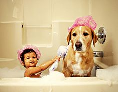 bath time!! too cute not to share!!  Cottage Cheese Balls    Ingredients:  2/3 Cup cottage cheese  6 Tsp. milk  6 Tsp. flaxseed oil (optional: olive oil with a sprinkling of flaxseeds)  1 egg yolk  2 Cups oatmeal    Directions: Mix all ingredients and form small balls. Bake the treats approx. 30 minutes at 350 degrees F. until the dog treats are crunchy. You could add other cheeses, liver, bacon, or ham.