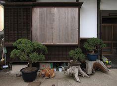 Tokyo Plant Pots