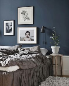 Dark blue bedroom wa