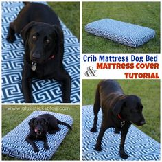 10 diy beds for your loving pet friends pinterest dog beds diy crib mattress dog bed diy mattress cover solutioingenieria Image collections