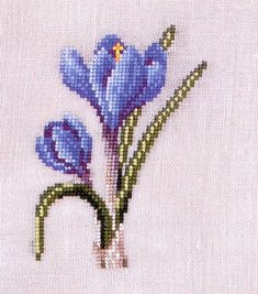 Gallery.ru / Фото #1 - Цветы 3 - BlueBelle