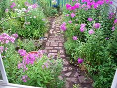 Build a charming (free!) garden path with old bricks & recycled pavers.
