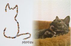 Custom hand embroiderey of tortoise shell cat on one of our personalized t shirts