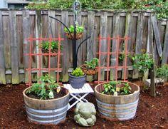 Fun with wine barrels...!