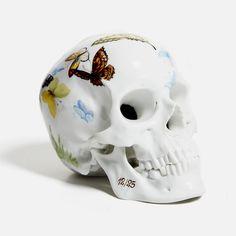 "anitaleocadia: ""Andreas Murkudis - Porcelain skulls for Nymphenburg """