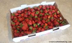 Strawberry equivalents plus how to store fresh strawberries.