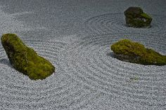 Islands in a flowing sea Japanese Rock Garden, Japanese Gardens, Japanese Style, Cool Rocks, Water Gardens, Grasses, Terrariums, Fungi, Science Nature