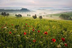 Tuscan spring 1 by Daniel Řeřicha, via 500px
