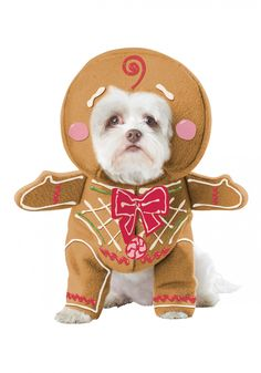 gingerbread-pup-dog-costume