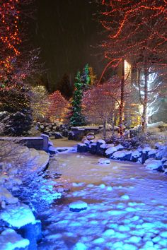 Whistler BC Canada..... Magical, my first ever visit to the snow ⛄️❄️