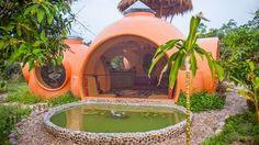 maison-insolite-nature-dome (5)