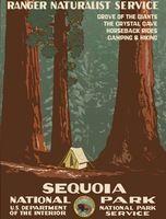 Секвойя Национальный Парк Лес Путешествия Урожай Ретро Декоративные Плакат DIY…