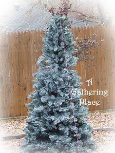 A Gathering Place: ~~~HOW TO PAINT YOUR CHRISTMAS TREE~~~ Winter White Wonderland