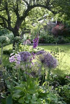 Lovely Cottage garden - create your garden around an existing tree if you can