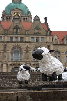 Teischschafe auf dem See am neuen Rathaus in Hannover 2010