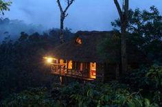 Tree hut at Aranyakam, Kerala, India
