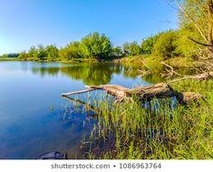 Zander Spining River Fishing: zdjęcie stockowe (edytuj teraz) 1862784382 Sunny Days, Fishing, River, Image, Peaches, Rivers, Pisces, Gone Fishing