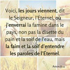 Amos 8: 11