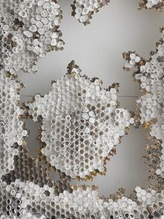 Forever fascinated by honeycombs.