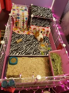 Guinea Pig Cage Update. Just got the Hearty Hay Buffett from Guineapigcagesstore.com it is the perfect solution to keeping hay as tidy as possible. I have tried every type of hay storage out there and this is the best!!