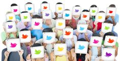 Twitter's Mute Feature in Android and iOS Apps