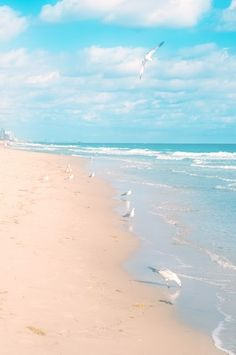 Life is but a dream. Fort Lauderdale Beach, Florida.