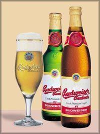 Budweiser Magnum Strong Beer 500ML Can | Gulpwiki - The ...