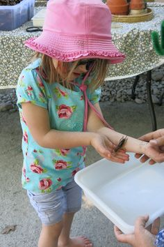 Weta handling at Nature Play Park