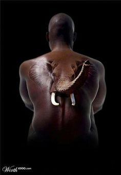 Elephant back 3D tattoo - 60 Amazing 3D Tattoo Designs <3 <3