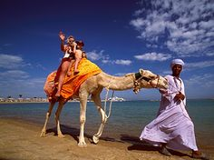 Hurghada Beach - Egypt camel riding at it's finest. Those are some smelly animals!!! But I survived it.