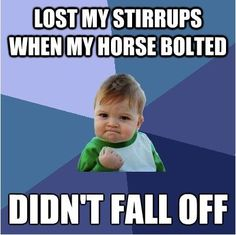 Twice last Saturday and countless times today. Oh the pleasures of having a young, skittish thoroughbred...