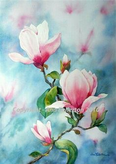 Ann Fullerton - paintings, commissions and art classes Silk Painting, Watercolour Painting, Painting & Drawing, Watercolors, Botanical Art, Botanical Illustration, Watercolor Cards, Watercolor Flowers, Arte Floral