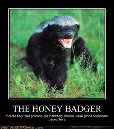 Honey Badger, holy hand grenade